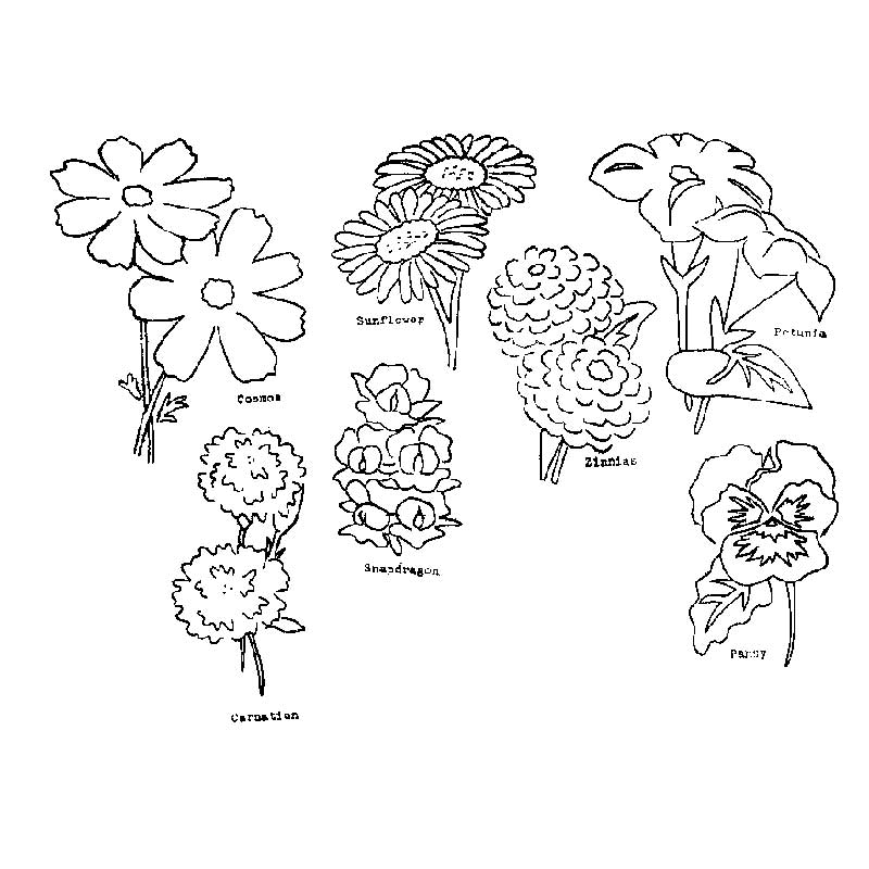 various flowers embroidery patterns
