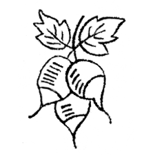 radishes - embroidery pattern