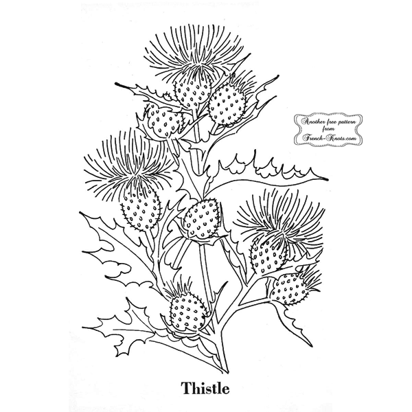 thistle embroidery pattern