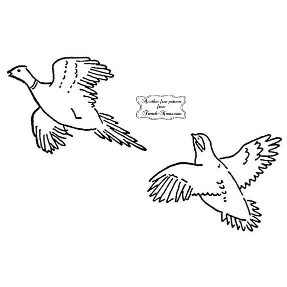pheasant and bird