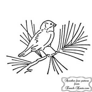 bird on a pine branch