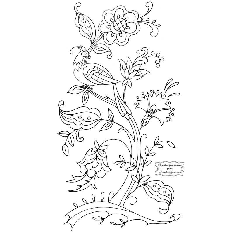 dutch bird in tree
