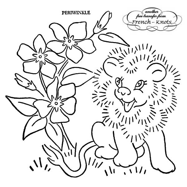 floral set - baby lion