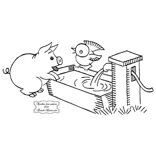pig at water trough