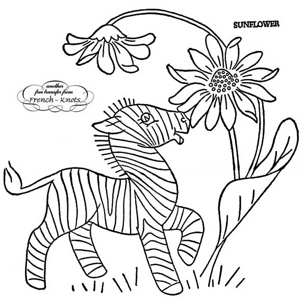 floral set - baby zebra